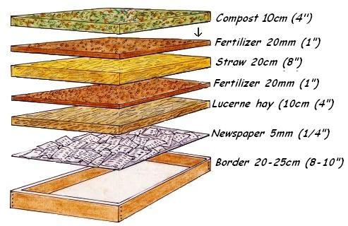 building-a-vegetable-garden-6layers
