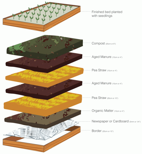 vegetable_garden_layer_diagram-554x600